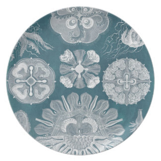 Sealife Blueprint IV Party Plates