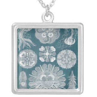 Sealife Blueprint IV Silver Plated Necklace