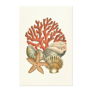 Sealife Collection Canvas Print
