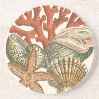 Sealife Collection Coaster