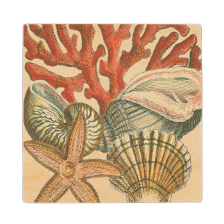 Sealife Collection Wood Coaster