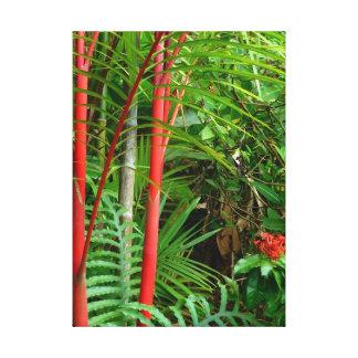 Sealing Wax Palms Canvas Print