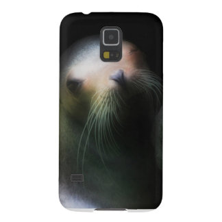 Sealion phone case