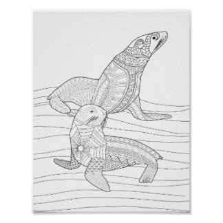 Seals Adult Coloring Poster