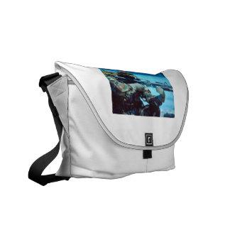 SEALS BAG COURIER BAGS