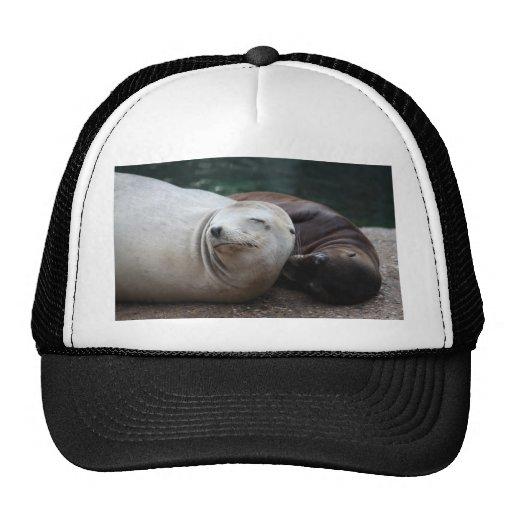 Seals Mesh Hats