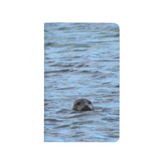 Seals in Orkney (Scotland) Journals