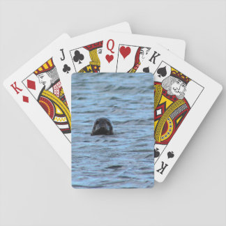 Seals in Orkney (Scotland) Playing Cards