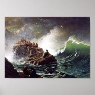 Seals on the Rocks by Albert Biestadt Poster