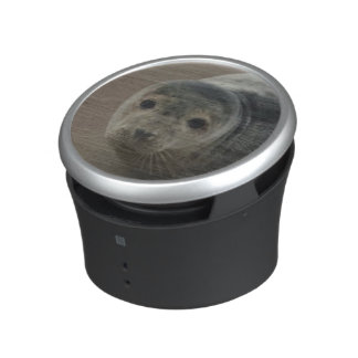 Seals rock baby seal pup bluetooth speaker
