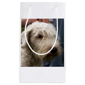 Sealyham_terrier.png Small Gift Bag