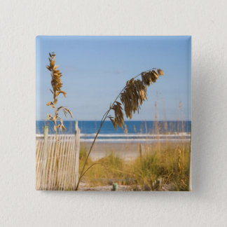 Seaoats (Uniola paniculata) and fencing for 15 Cm Square Badge