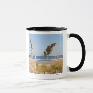 Seaoats (Uniola paniculata) and fencing for Mug