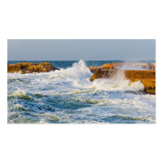 Seascape Double-Sided Standard Business Cards (Pack Of 100)