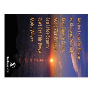 SeaScape Life Ocean Advice Postcard