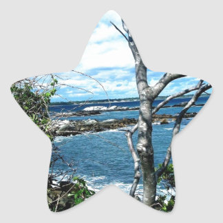 Seascape Star Sticker