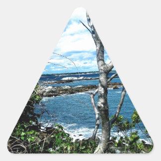 Seascape Triangle Sticker