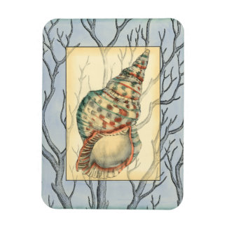 Seashell and Tree Branches Rectangular Photo Magnet