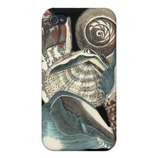 Seashell Anthology Covers For iPhone 4