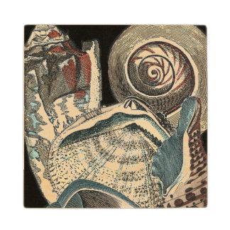 Seashell Anthology Wood Coaster