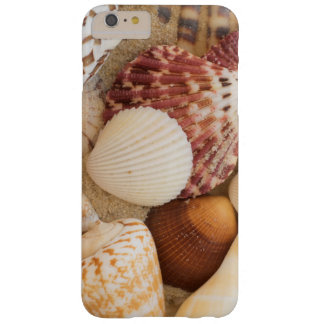 Seashell Arrangement Barely There iPhone 6 Plus Case