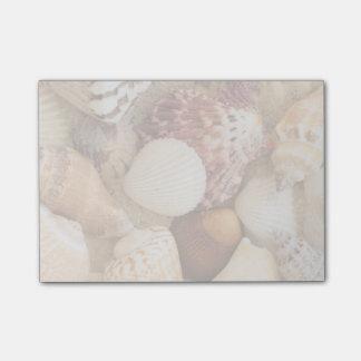 Seashell Arrangement Post-it Notes