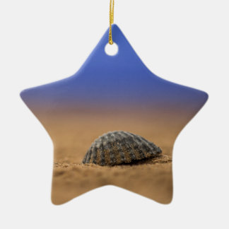 Seashell Christmas Ornament