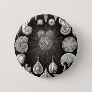 Seashell design 6 cm round badge