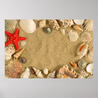 seashell frame poster