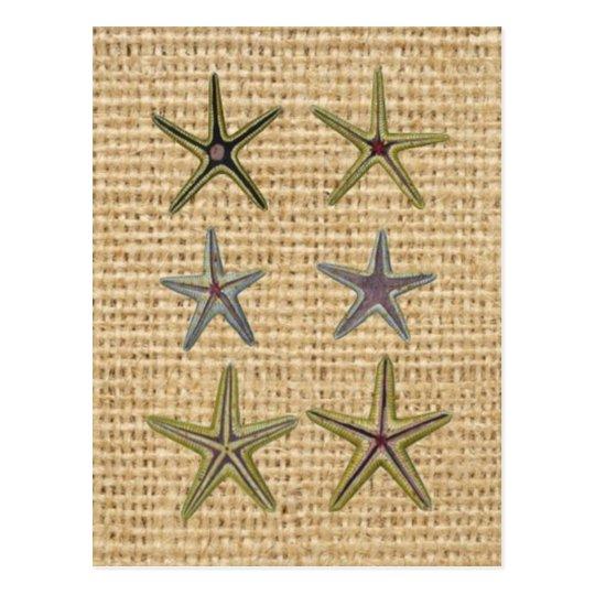 seashell french country burlap beach chic starfish postcard