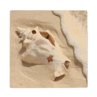 Seashell On Beach | Grand Turk Caribbean Island Wood Coaster