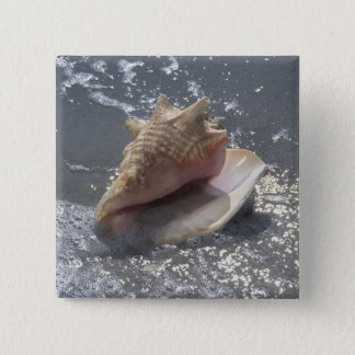 Seashell On Beach | Sanibel Island, Florida 15 Cm Square Badge