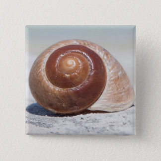 Seashell On Beach | St. Petersburg, Fl 15 Cm Square Badge