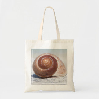 Seashell On Beach | St. Petersburg, Fl Tote Bag