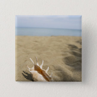 Seashell on sandy beach 15 cm square badge