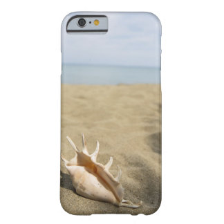 Seashell on sandy beach barely there iPhone 6 case