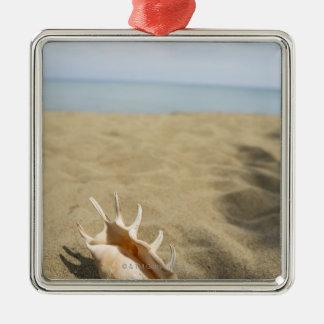 Seashell on sandy beach christmas ornament