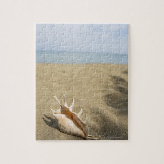 Seashell on sandy beach jigsaw puzzle