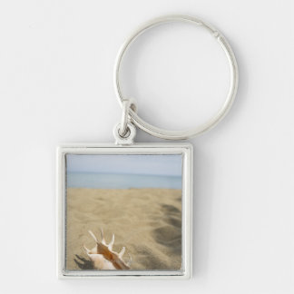 Seashell on sandy beach Silver-Colored square key ring