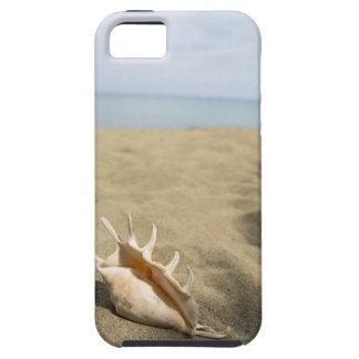 Seashell on sandy beach tough iPhone 5 case