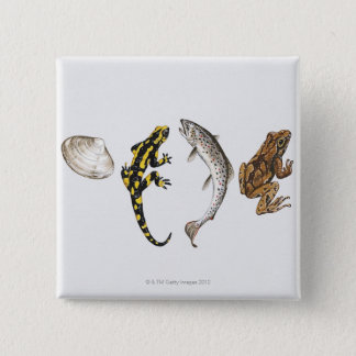 Seashell, Salamander, Salmon 15 Cm Square Badge