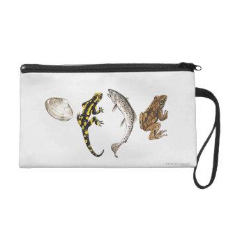 Seashell, Salamander, Salmon Wristlet Clutch