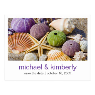 Seashell | Save the Date Postcard