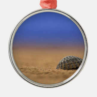 Seashell Silver-Colored Round Decoration