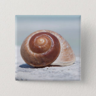 Seashell | St. Petersburg, Florida 15 Cm Square Badge