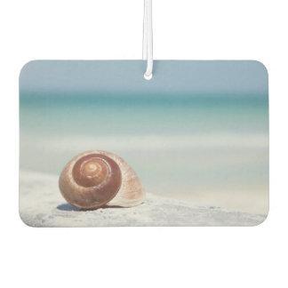 Seashell | St. Petersburg, Florida Car Air Freshener