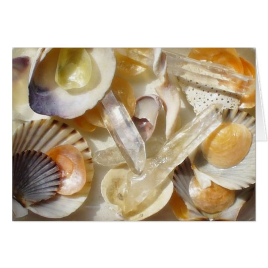 seashell sunlight card