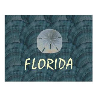 seashellcollage, sanddollar, FLORIDA Postcard