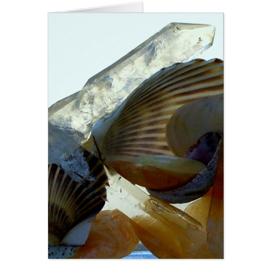 Seashells and crystals notecard