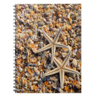 Seashells and Starfish Notebook